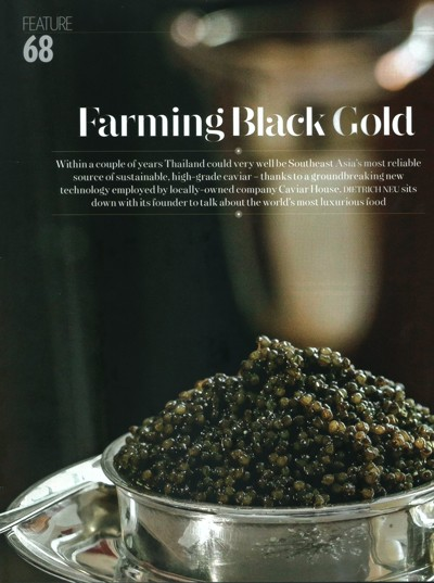 Farming Black Gold